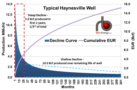 Type and EUR Curves for a Typical Haynesville Gas Well
